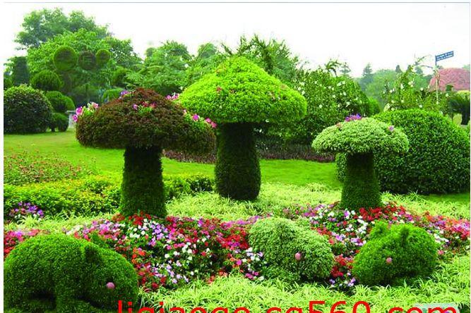 供应开封金谷园立体植物雕塑|立体花坛|五色草花坛