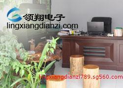 青州市领翔电子科技有限公司