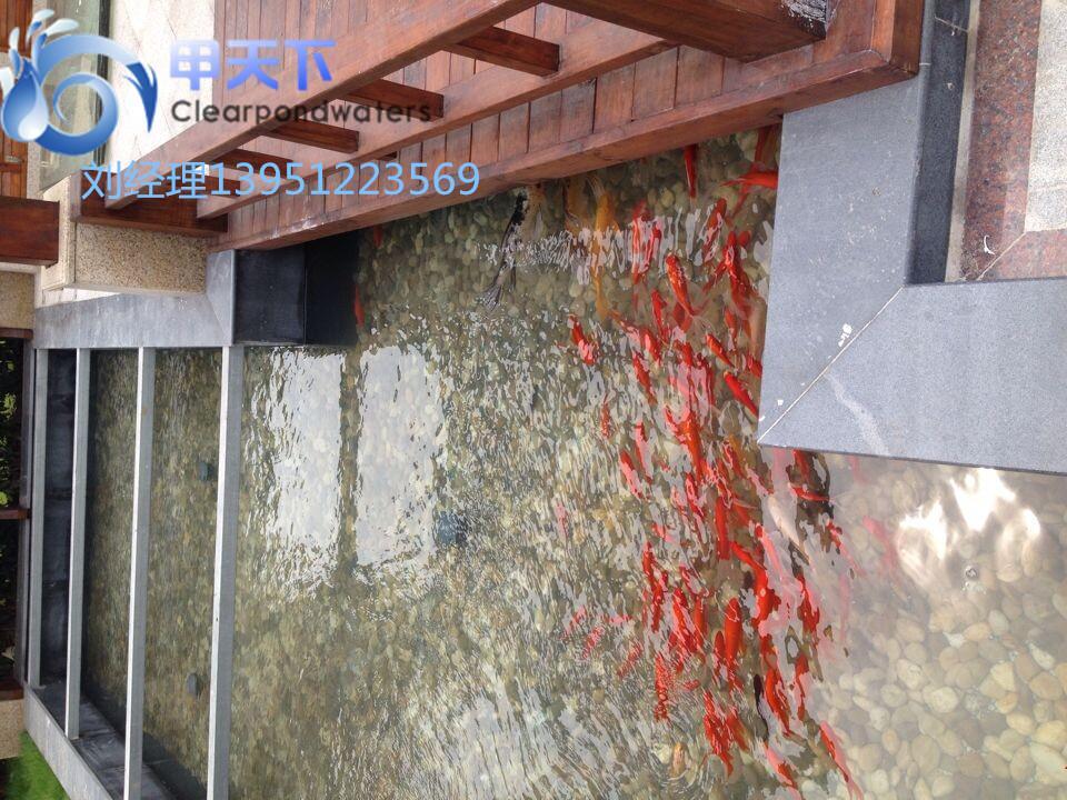 庭院鱼池水处理 室内鱼池水过滤器