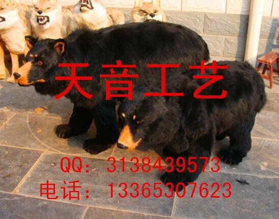 仿真狗熊模型 动物狗熊标本