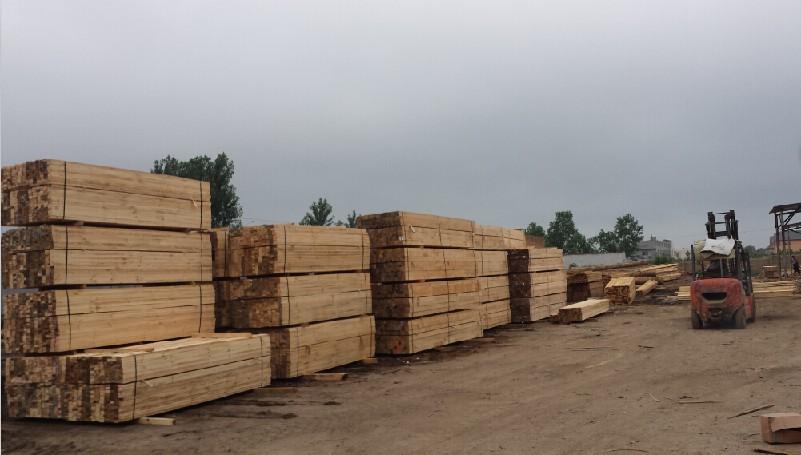 广东方木:买优惠的福建建筑方料,就来荣丰木业