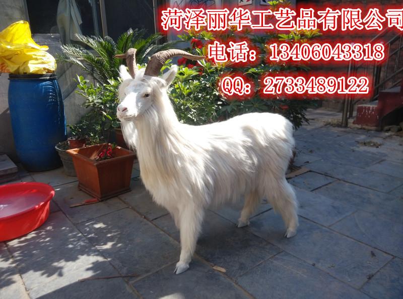家养仿真山羊模型山羊绵羊羊年吉祥摆件小羊教学道具