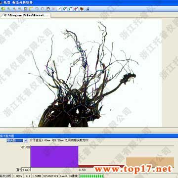 植物根系图像监测分析系统gxy-a扫描植物根系进行